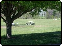Carroll Park - Chandalar Subdivision, image of grassy field with bench and a tree
