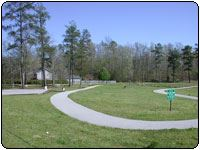 Coker Park, image of a walking trail surrounded by woods